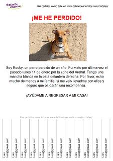 Ejemplo carteles de mascotas perdidas