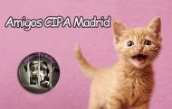 Amigos CIPA Madrid - Refugios, protectoras y eventos a favor de los animales