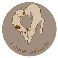 Amores Peludos - Refugios, protectoras y eventos a favor de los animales