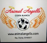 Animal Angells - Refugios, protectoras y Eventos de protectoras de animales