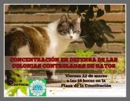 Concentración en defensa de las Colonias Controladas de Gatos - Eventos celebrados a favor de los animales