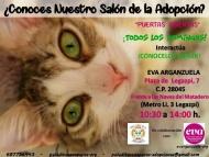 Jornadas de Adopción Felina - Eventos celebrados a favor de los animales