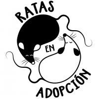 Ratas en Adopción - Refugios, protectoras y eventos a favor de los animales