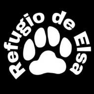 Refugio de Elsa - Refugios, protectoras y Eventos de protectoras de animales