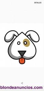 Residencia y cuidado de mascotas