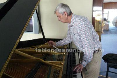 Afinador técnico de pianos - www.afinapianos.es