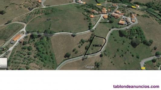 Gijón: a 18 km. En muñó venta finca edificable