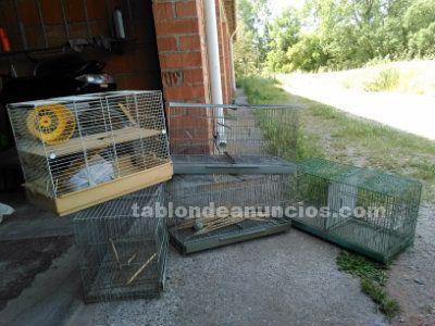 Pack de jaulas para cria de canarios