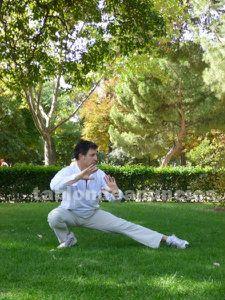 Profesor tai chi chi kung yan chen