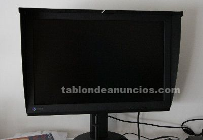 Vendo eizo coloredge - cs240 con visera