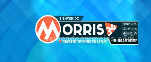 Diseño web profesional: morris34