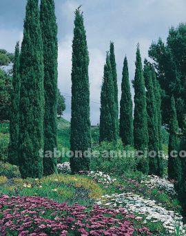 Fincas de cultivo y recreo en parque natural