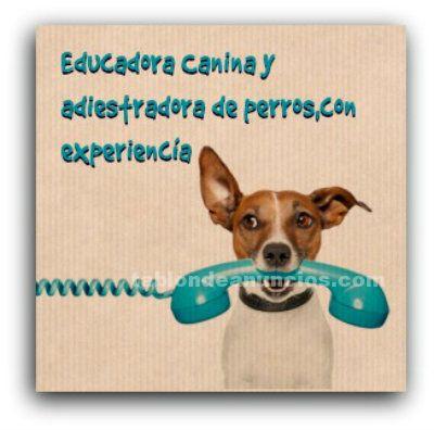 Se ofrece educadora canina y adiestradora