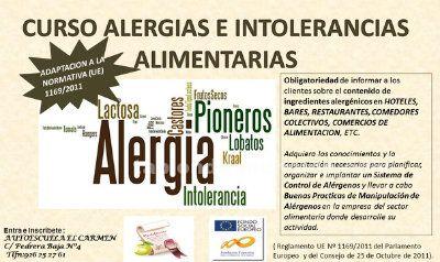 CURSO MANIPULADOR ALIMENTOS E INTOLERANCIAS ALIMENTICIAS