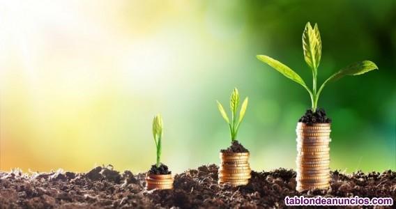 Comercial freelance firma bio para gestión de equipo