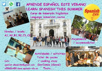 Curso de verano de inmersi�n ling��stica en espa�ol / language immersion course