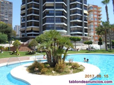 Tabl n de anuncios com apartamentos turisticos torpa julio benidorm con fotos alquiler - Alquiler apartamentos turisticos ...