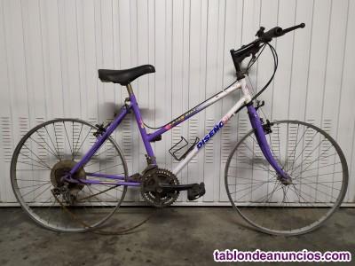 Bici juvenil btwin para reparar