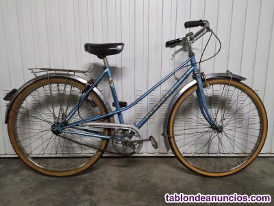 Bicicleta pedro delgado