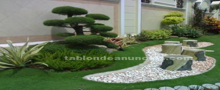 Manteniniento de jardines y  piscinas