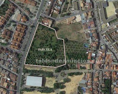 Terreno urbanizable en avenida sanlúcar la mayor, 26 / benacazón