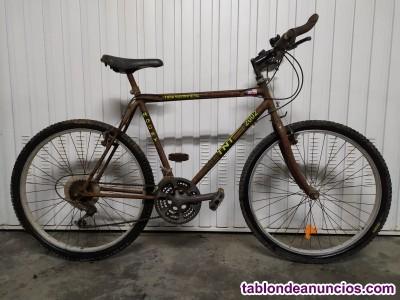 Bicicleta juvenil gris