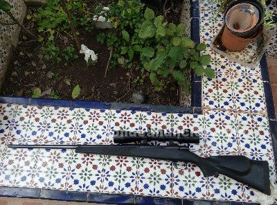 Vendo rifle cerrojo weatherby 7mm rem. Mag.