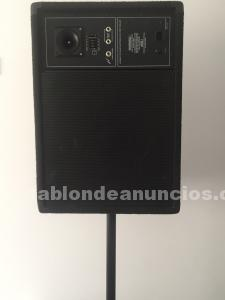 "Monitor peavey 15"" 150w rms"