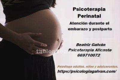 Psicología perinatal: atención psicológica en el embarazo, parto y postparto