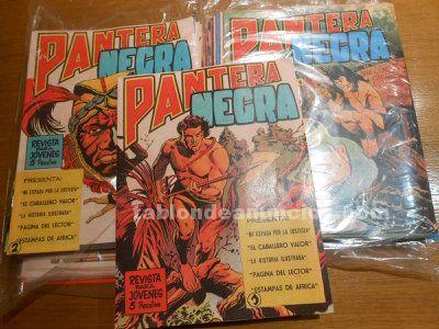 Revista pantera negra