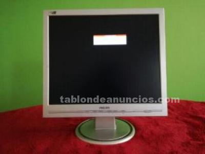 Monitor philips 170s 17
