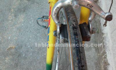 Bicicleta de crreras esmaltina