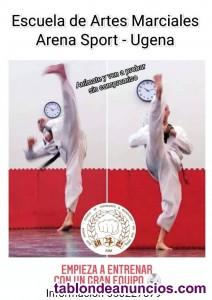 Clases de taekwondo y kouksundo por las mañanas