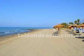 Playa alicate
