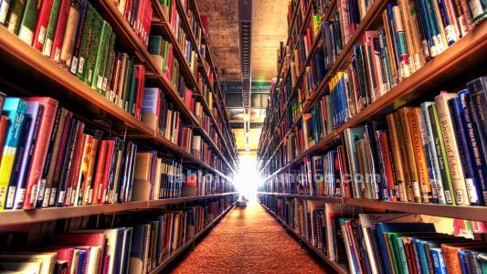 Se venden libros leídos una sola vez, pregúnteme por favor cuál desea.