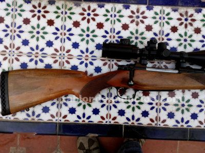 Vendo rifle brno 375h&h con magna-port