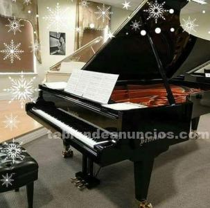 Profesora de piano