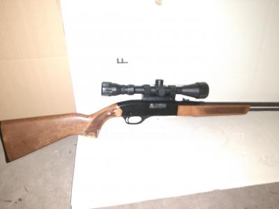 Winchester lr22