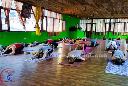 Join yoga teacher training course in the nature