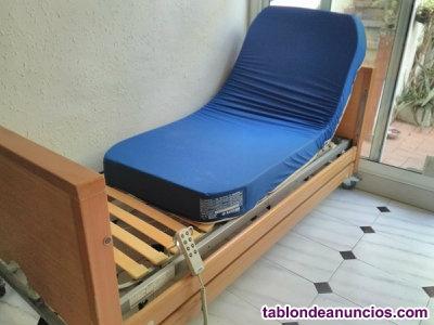 Cama de cuidados con colchón y almohada +mini grúa +silla baño