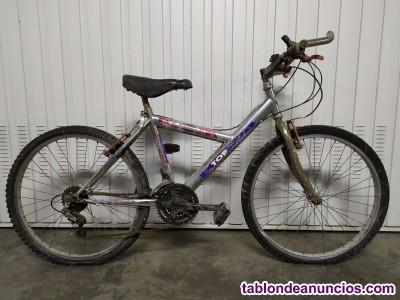 Bicicleta dtb juvenil