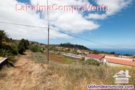 ID-272 Terreno en Urbano y Asentamiento Agrícola.