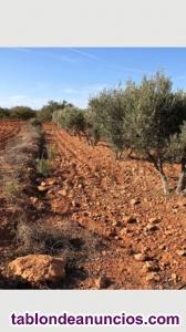 Se vende  terreno cartagena