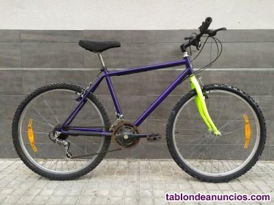BICI CLASICA TORROT PARA BMX