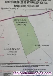 VENDO PRADERA SUPERFICIE 19981M2