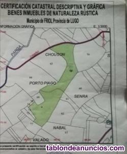 Prado superficie 14199m2