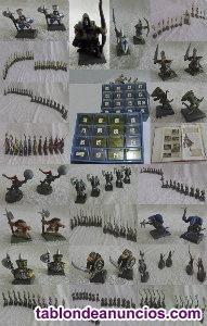 Vendo figuras warhamer montadas y pintadas en plástico