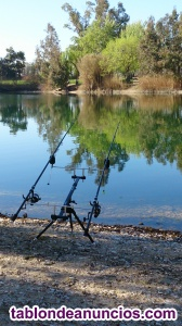 Set carp fissing
