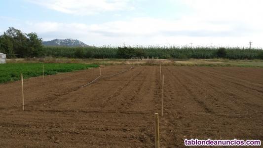Terreno agrícola