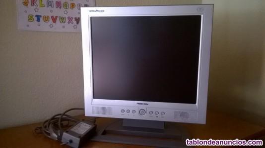 40€ se vende monitor plano tft 17